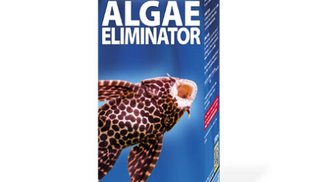 King British Algae Eliminator