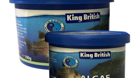 King British Algae Wafers 40g & 100g