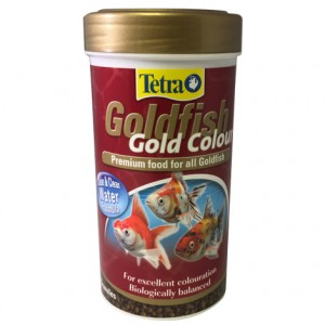 Tetra Goldfish Gold Colour