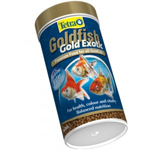 Tetra Goldfish Gold Exotic