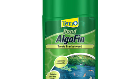 Tetra Pond AlgoFin (Treats Blanketweed)