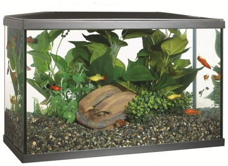 Marina Lux 38 Sedgley Road Aquarium